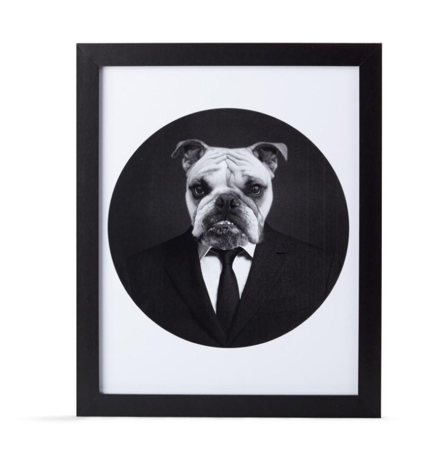 cadre-chien-homme